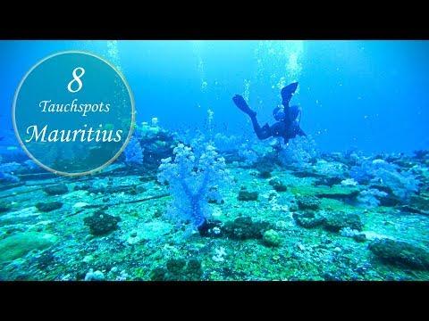 Weltreise • Mauritius - Die besten Tauchspots auf Mauritius • Vlog #024